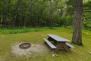 Photo of one of five canoe-in campsites located on the south side of Rice Lake and offer a secluded camping experience.