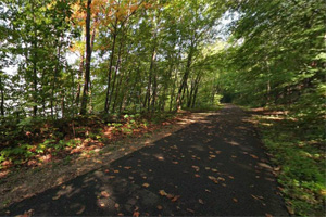 Photo of the shady paved trail, used by a variety of trail users throughout the seasons.
