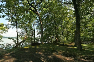 Photo of a shoreline picnic area.