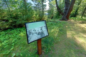Photo an interpretive sign explaining the history of logging in the area.