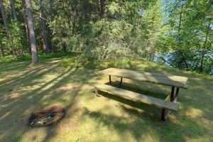 Photo of the Pine Region Picnic Area, set on the shores of the Mississippi River.