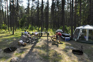 Photo of the park's group camp area with plenty of room to cook meals, and spend time around the campfire.