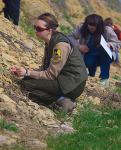 Visitors fossil collecting with park naturalist, Sara Grover.