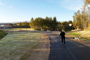 Photo of a walker and dog traveling along the trail within the city of Silver Bay.