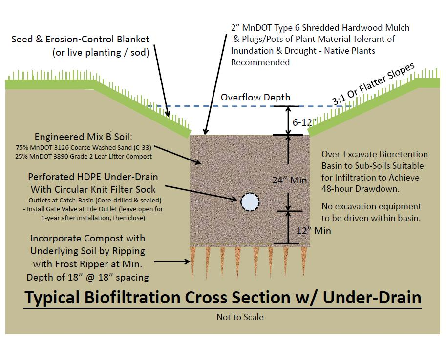 Typical bioretention cross-section with under-drain (graphic)
