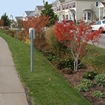 Linear raingarden example.