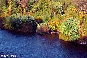 Little Fork River