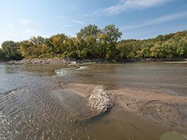 One of the many sandbars along this river segment