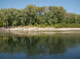 Many sandy banks line the river