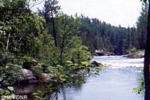 Vermilion River rapids