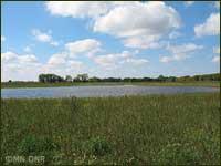Wetland wildlife management area.