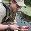 Examining an aquatic plant