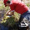 Surveyor looking through moss