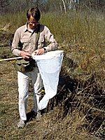 Researcher in the field with collecting net.