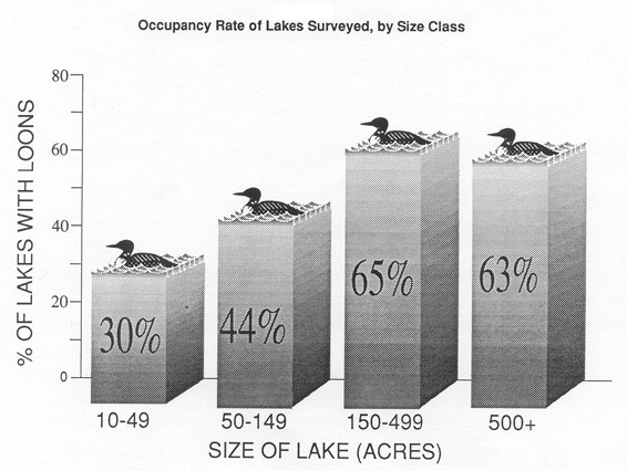 graph of occupancy rate of loons by lake size