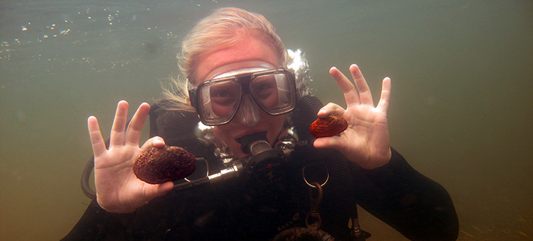 diver with mussels