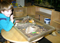 photo: Sensory Table