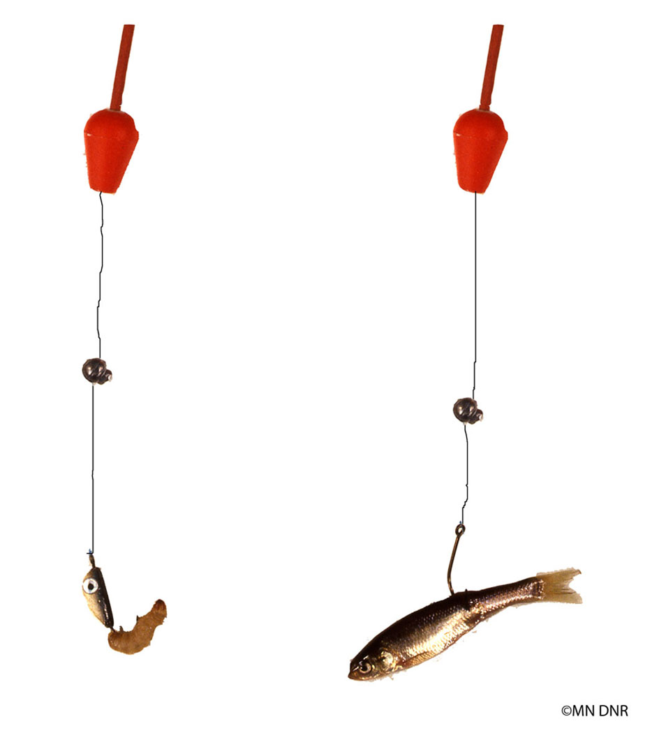Baiting Hooks for ice fishing