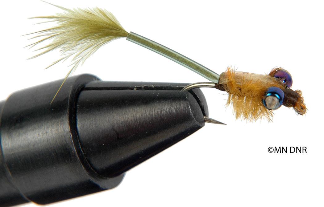 Damselfly Larvae Nymph Fly