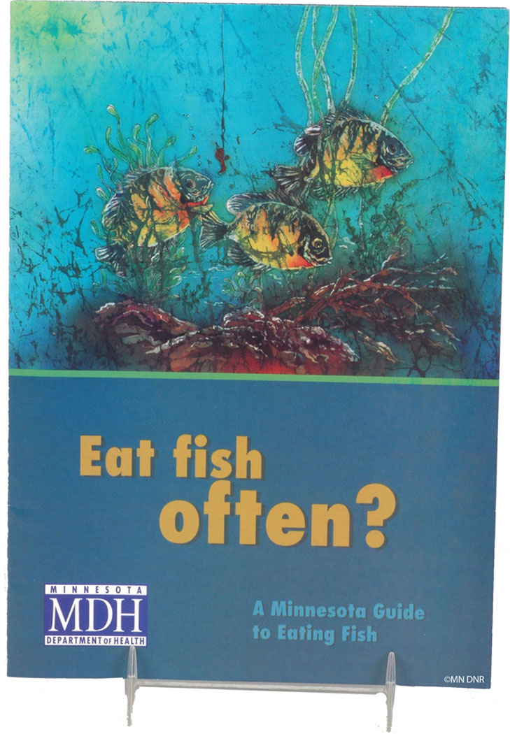 Eat Fish Often? booklet cover from Lesson 6:5 - Eating Fish