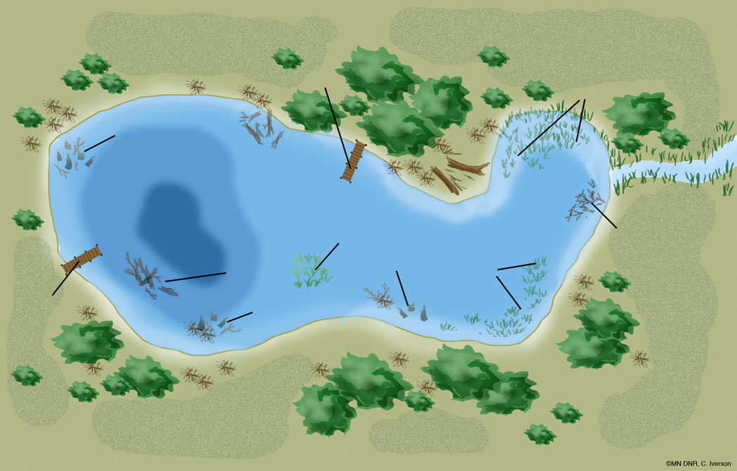 Lake Habitat Unlabeled