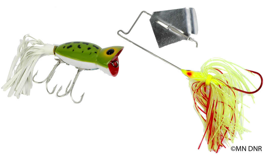 Surface Lures of Various Sizes