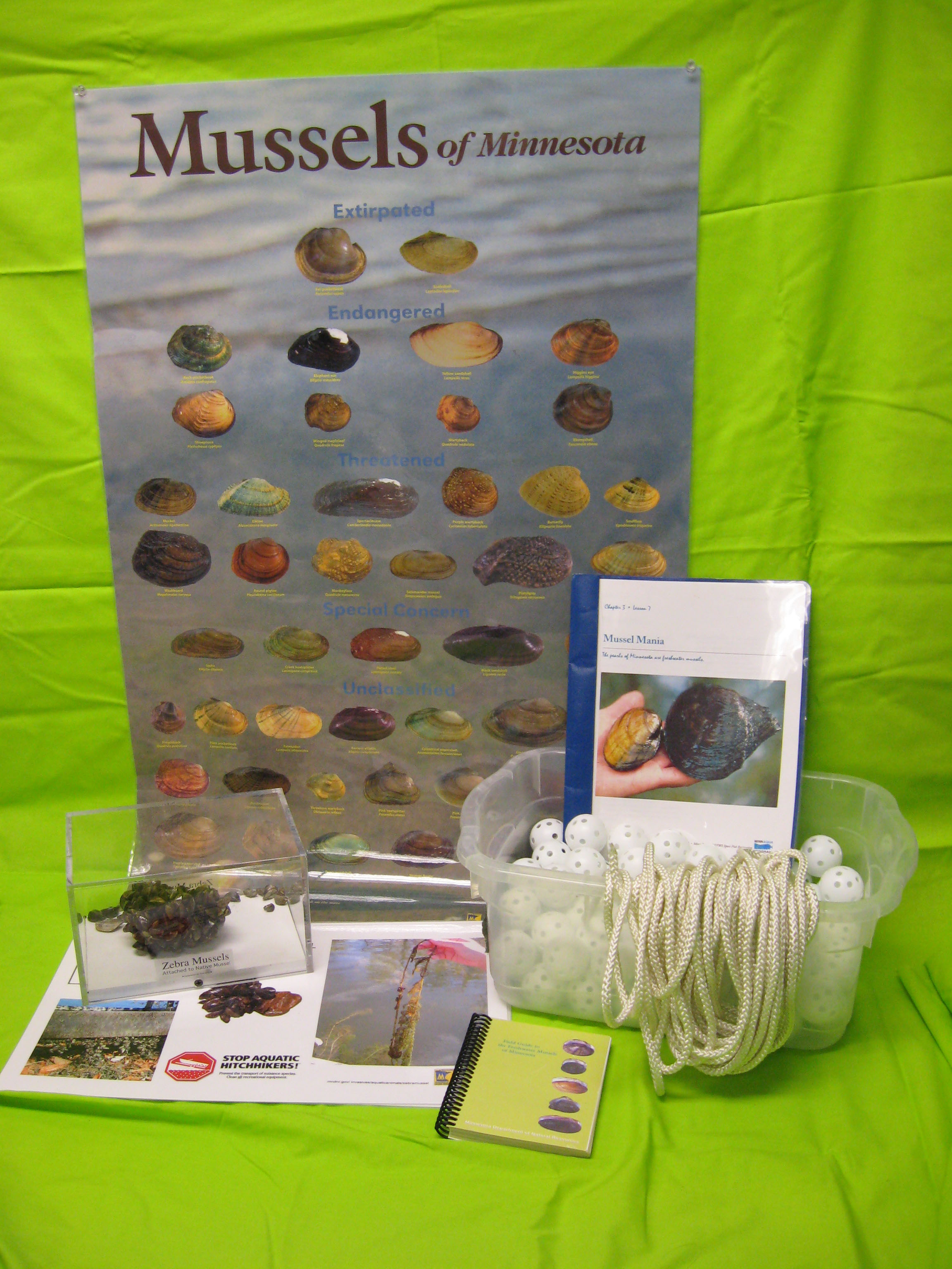 Materials for Mussel Mania