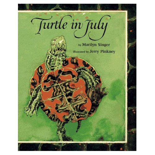 Turtle in July