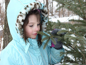 young girl looking at spruce tree.
