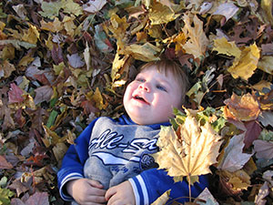 young boy lying in leaves