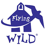 flying wild cover