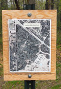 photo of a School forest map