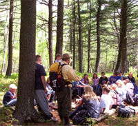 Photo of students in woods