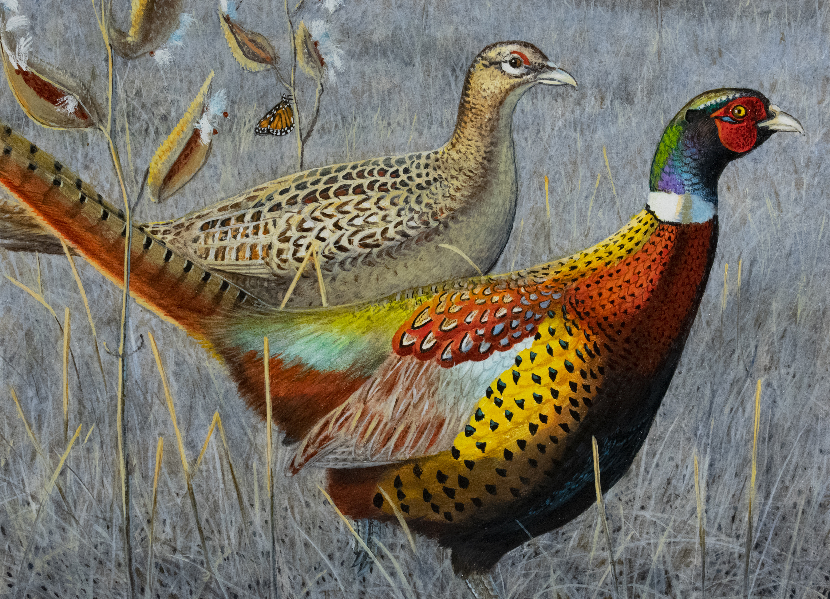 The 2021 pheasant stamp