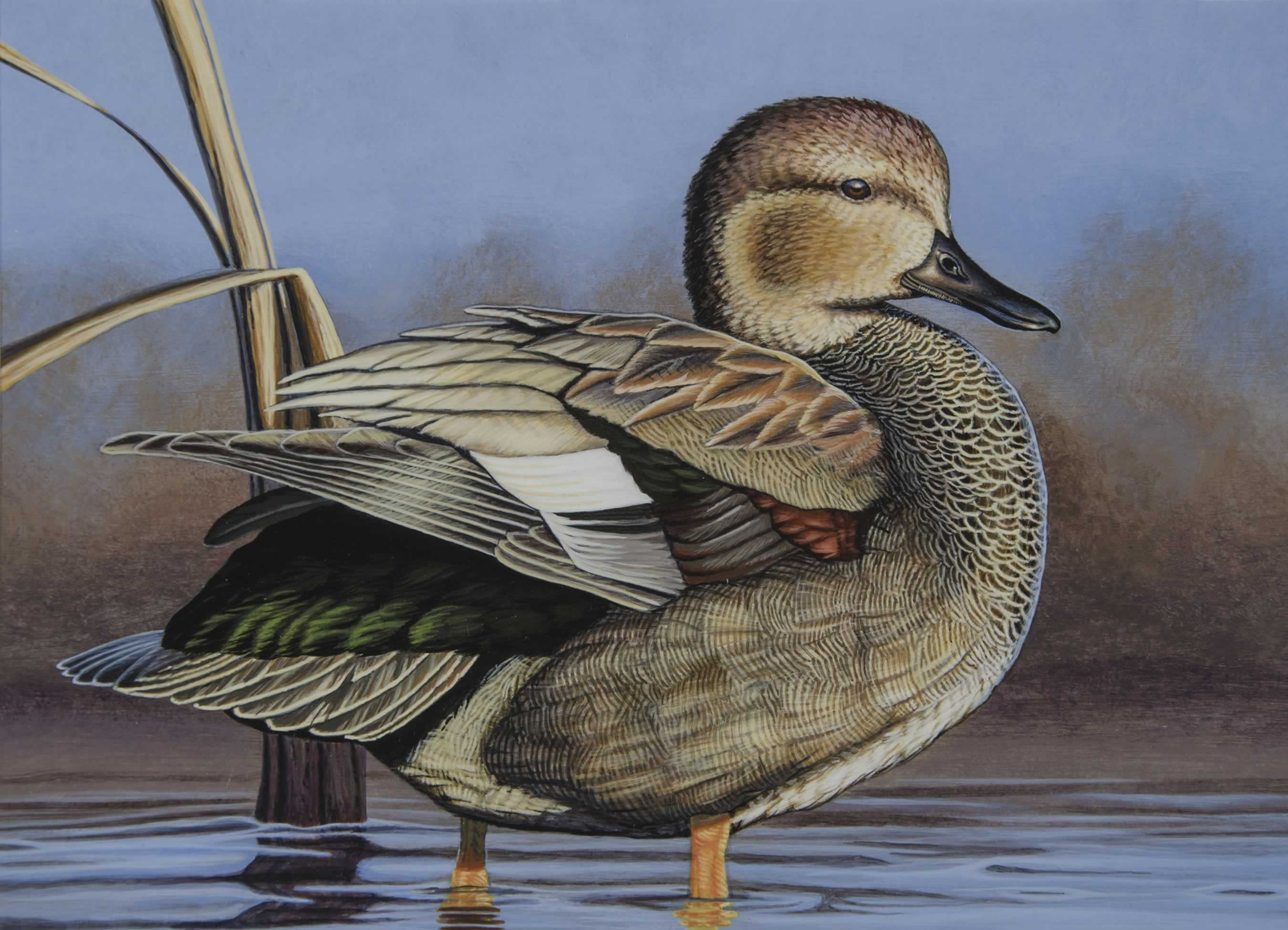 The 2019 waterfowl stamp