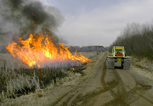 Prescribed burning on the Mille Lacs WMA for habitat management.