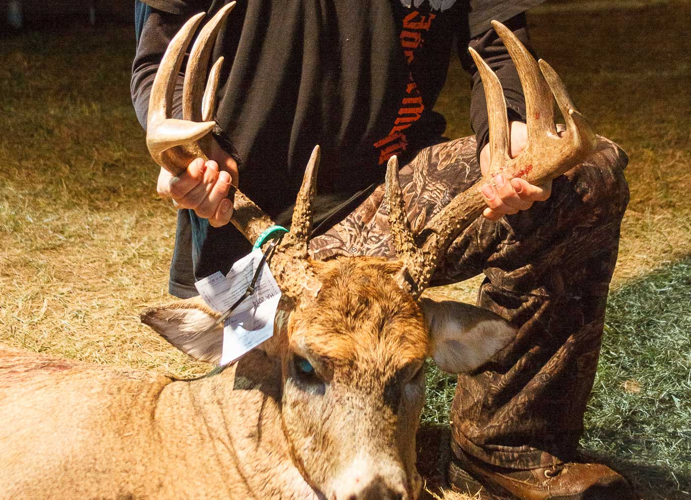 A hunter with his harvested buck at Camp Ripley