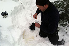 Researcher collecting a moose urine sample