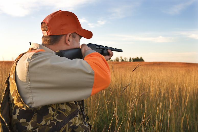 Upland hunter pointing shotgun