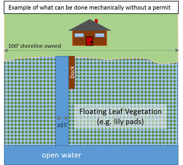 Diagram depicting the area and location of floating leaf vegetation that lakeshore property owners can clear without a permit.