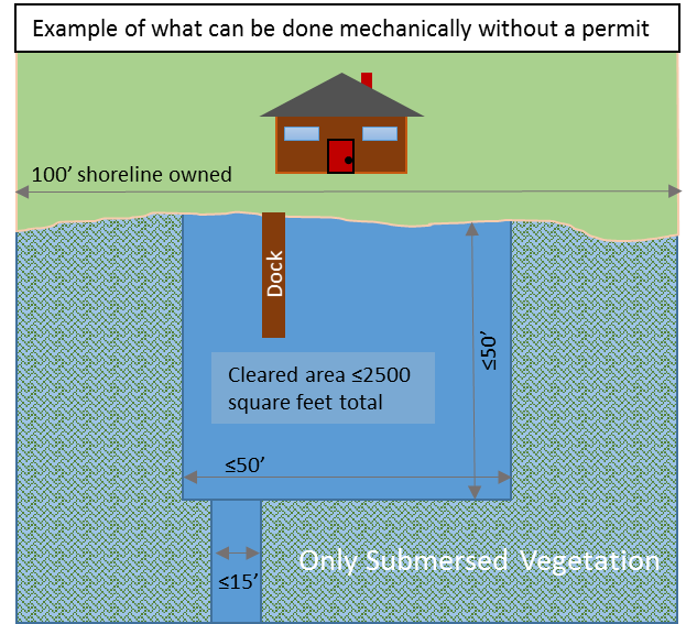 Diagram depicting the area and location of submerged vegetation that lakeshore property owners can clear without a permit.