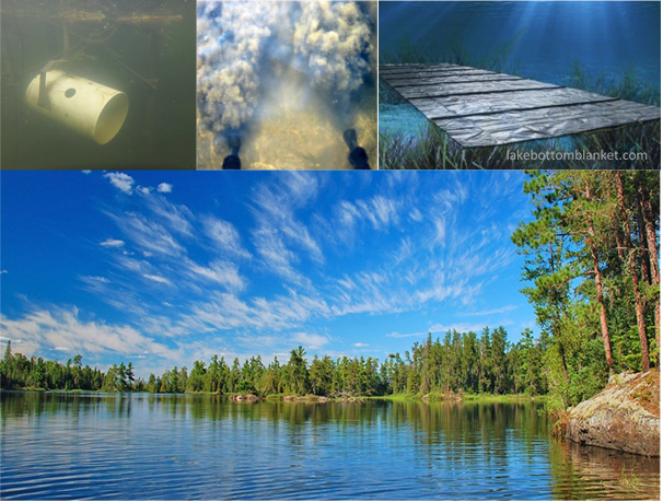 Composite image displaying activities that restrict or prevent aquatic plant growth.