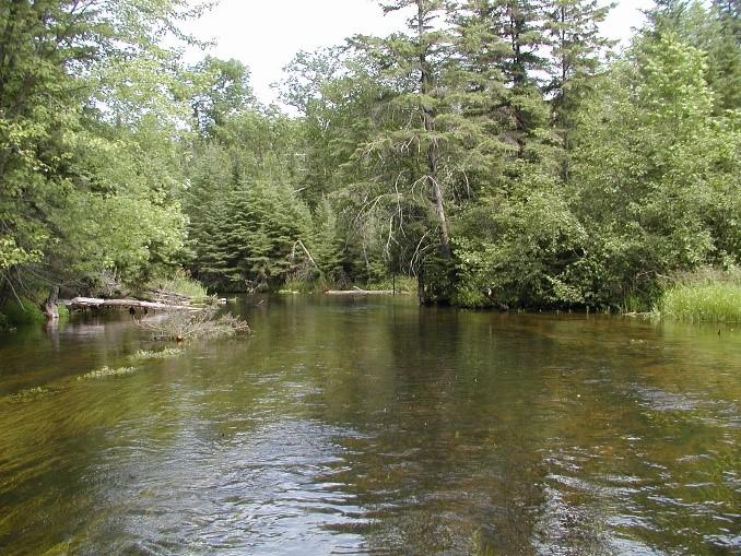 Straight River image