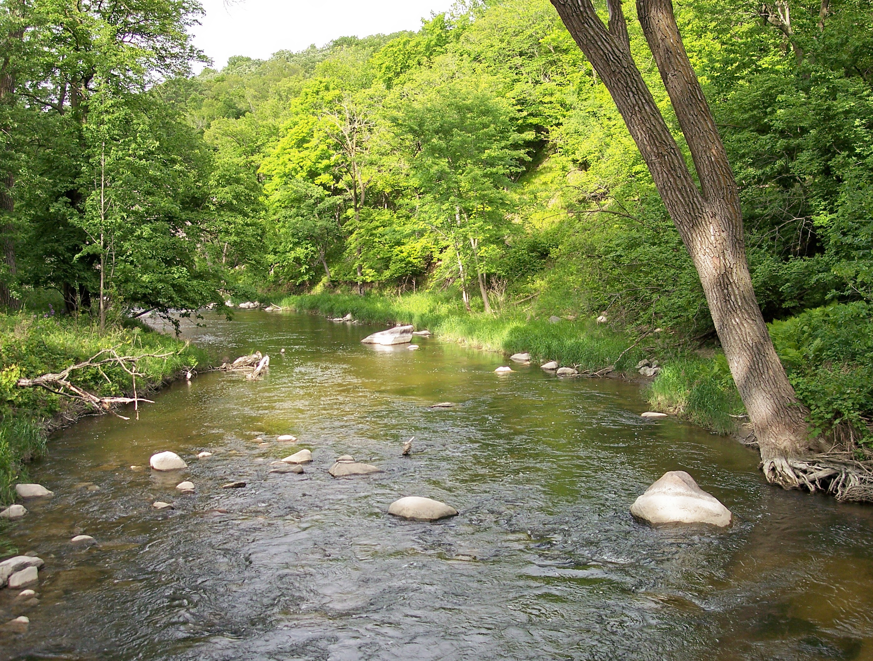 Boulders in the Redwood River as it flows through southwestern Minnesota's Camden State Park
