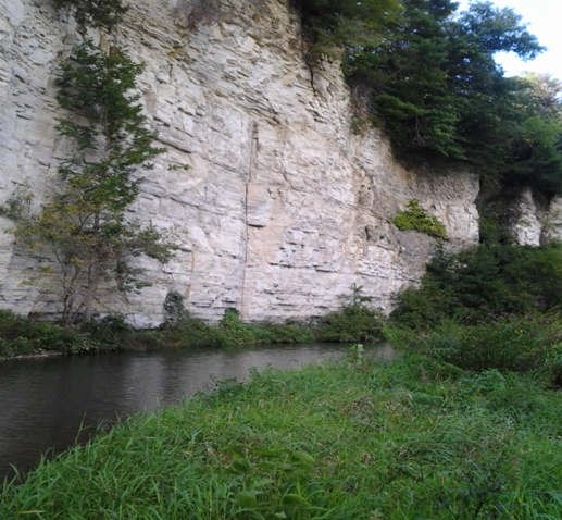 A limestone cliff along a southeast Minnesota trout stream.