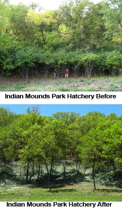 image: Indian Mounds Park Hatchery Before and After
