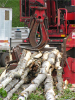 photo: processing logs for biomass