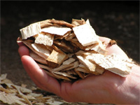 photo: hand full of wood chips