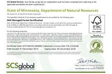 FSI certificate