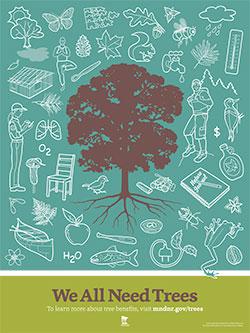 image: Nature's Playground Poster